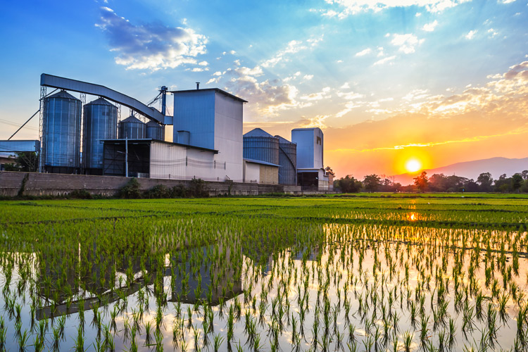 On-Farm Mills Prove Financially Sound Investment