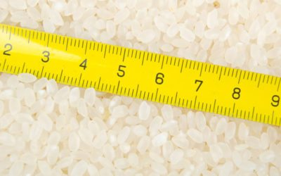 Rice Milling Metrics Quick Reference